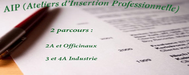 AIP ( Ateliers d'Insertion Professionnelle)